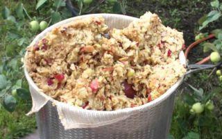 Рецепт браги для самогона из яблочного жмыха