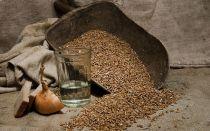 Секреты приготовления качественного самогона из ржи